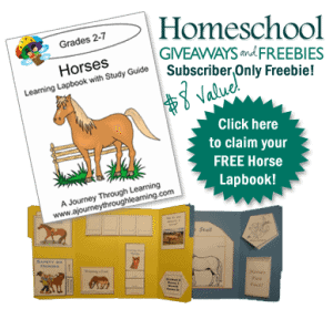 subscriber-only-horse-freebie