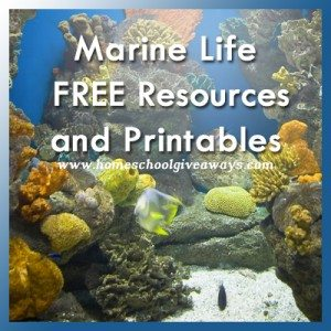 MarineLife