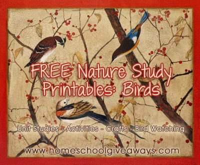 Free Bird Themed Printables And Unit Studies Homeschool