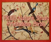 FREE Bird Themed Printables and Unit Studies!