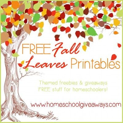 photo about Printable Fall Leaf named Free of charge Tumble Leaves Printables - Homeschool Giveaways