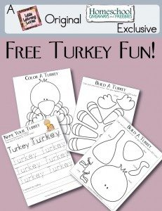 Create-A-Turkey-Fun_Big