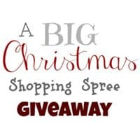 BIG Christmas Shopping Spree Giveaway ~ 3 Winners!