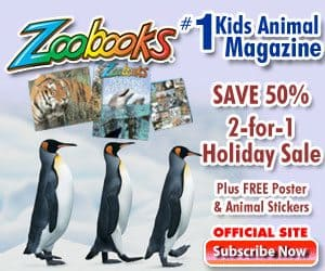 zoobookoffer