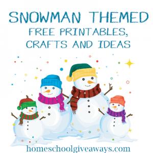 SnowmanTheme