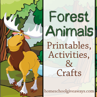 Forest Animals Printables Activities