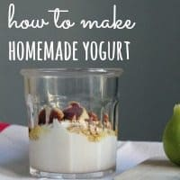 homemade-yogurt-tn