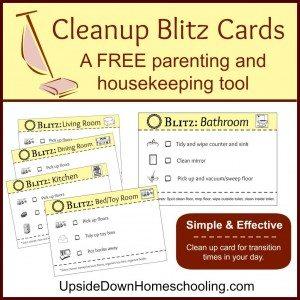 CleanupBlitzCards-1024x1024