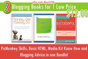 bloggingbundle1