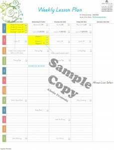 Weekly-Lesson-Plan-for-2-or-more-students-sample1
