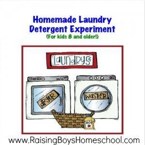 Homemade-Laundry-RaisingBoys