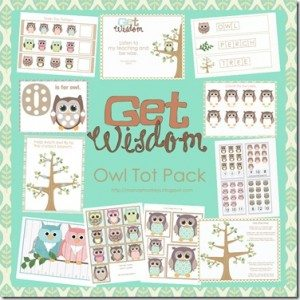 owl tot pack jpg copy[5]