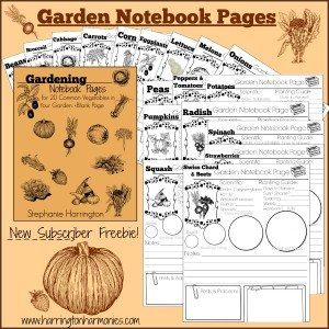 Subscriber-Freebie-Notebook-Pages600