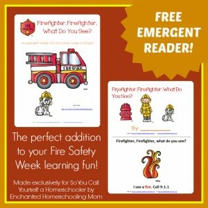 Firefighter-Firefighter-What-Do-You-See-Emergent-Reader-Main-Image