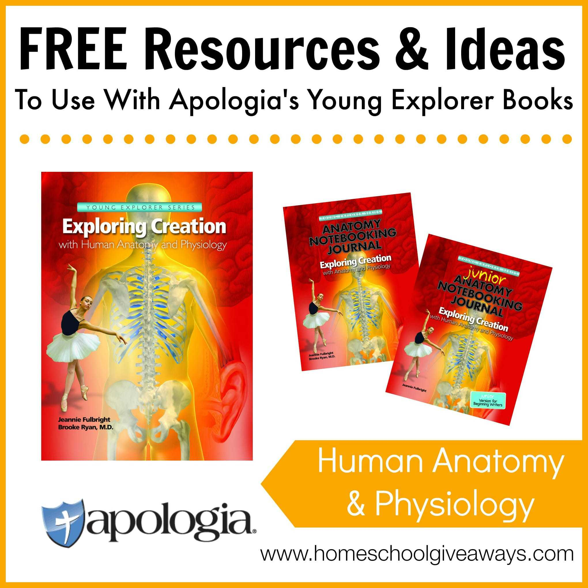 Free Resources And Ideas To Use With Apologias Exploring Creation