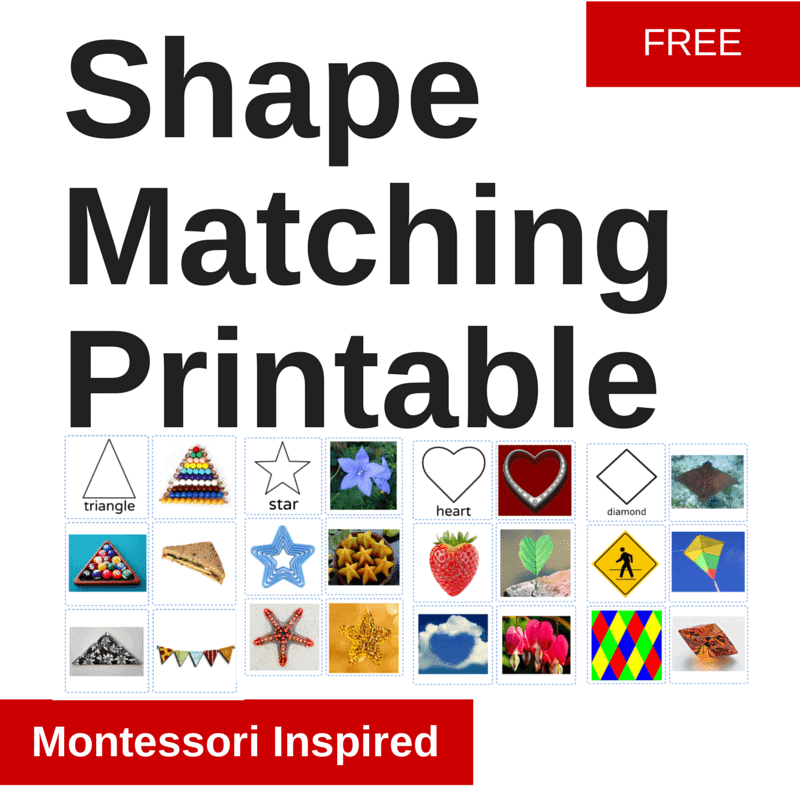 Shape Matching (1)