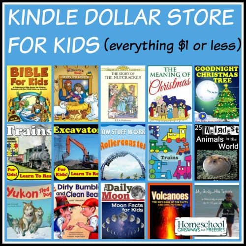 Kindle Dollar Store for Kids