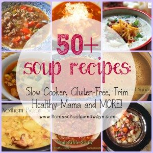 Something about winter weather that just makes you want to eat soup! Check out these 50+ soup recipes from vegetable to THM to Gluten-Free and MORE!! :: www.homeschoolgiveaways.com