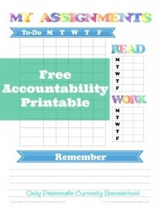 Free-Accountability-Sheet-for-Homeschool-Kids-394x512
