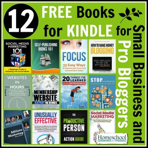 12 Free Books for Kindle for Small Business and Pro Bloggers