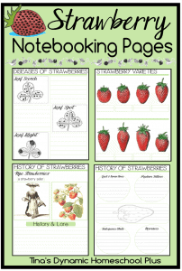Free-Strawberry-Notebooking-Pages