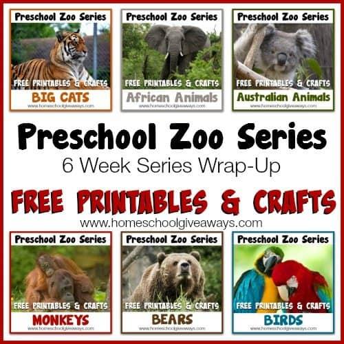 Patient Of The Week At Australia Zoo: 6 Week Series Wrap-Up FREE