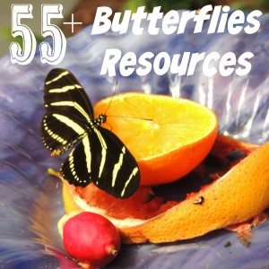 Spring is the perfect time to study butterflies. Check out this HUGE list of resources including {free} printables, crafts, activities, books & recipes!! :: www.homeschoolgiveaways.com