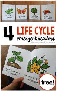 life-cycle-emergent-readers
