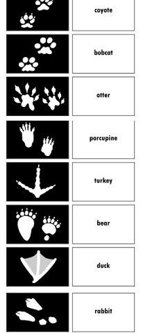 http://deceptivelyeducational.blogspot.com/2013/02/animal-tracks-match-up.html www.homeschoolgiveaways.com Learn all about tracking animals with this free printable matching game!