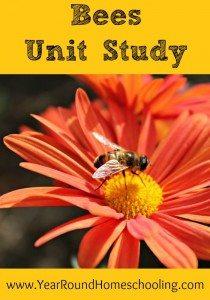 Bees-Unit-Study