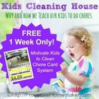 Kids-Cleaning-House-Why-and-How-we-Teach-our-Kids-to-Do-Chores-Giveaway-200