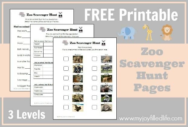 Zoo-scavenger-hunt-graphic