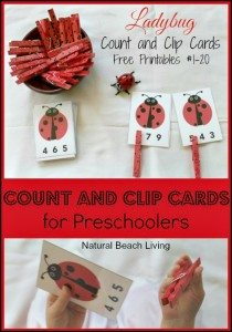 ladybugcard-pin21