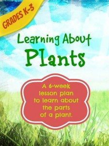 learningaboutplants