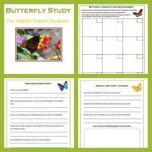 FREE Butterfly Study Guide www.homeschoolgiveaways.com Study butterflies this spring!