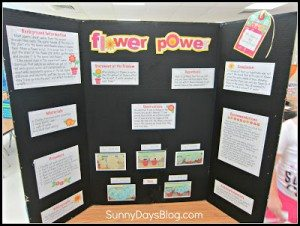 FREE Science Fair Project Idea and Printables www.homeschoolgiveaways.com Download these free printables and get a great start learning about creating a science fair project board!