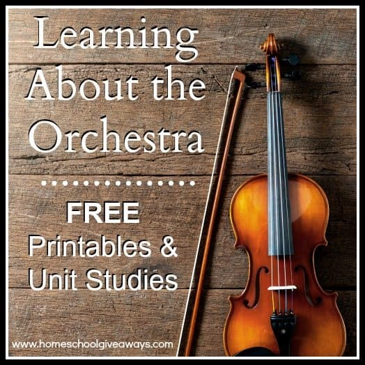 Learning About the Orchestra