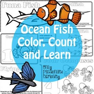 Ocean-Fish-Color-Count-and-Learn-500x500