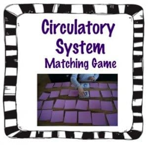 FREE Circulatory System 'Concentration' Game www.homeschoolgiveaways.com Improve knowledge about the circulatory system with this matching game!