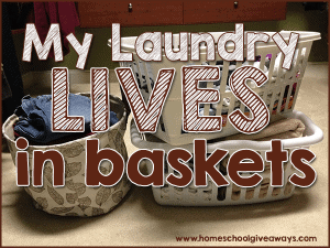 lives-baskets-main