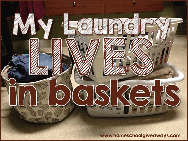 lives-baskets-main