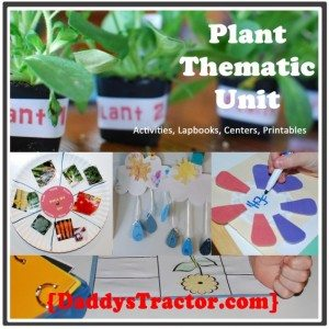 plant-themeatic-unit-icon