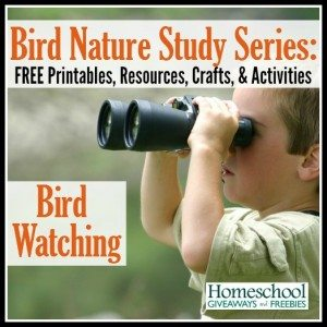 Bird Nature Study Series: FREE Printables, Resources, Crafts and Activities on Bird Watching