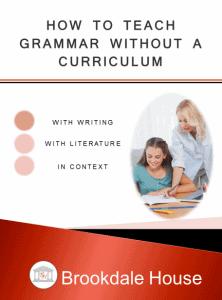 How-to-Teach-Grammar-without-a-Curriculum-456x615