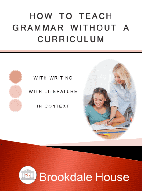 How-to-Teach-Grammar-without-a-Curriculum-456x615