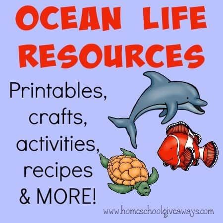 Kids love to study the Ocean! Here are some great resources to use when looking at all the different animals of the deep! :: homeschoolgiveaways.com
