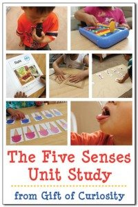 The-Five-Senses-unit-study-Gift-of-Curiosity