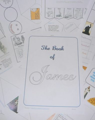 FREE James Lapbook www.homeschoolgiveaways.com Download this free lapbook on the book of James!