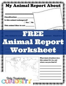 Free-Animal-Report-Worksheet-386x500