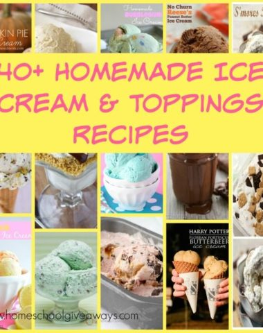 Summer is the perfect time to make some Homemade Ice Cream & Toppings! Try these 40+ recipes on for size! :: www.homeschoolgiveaways.com